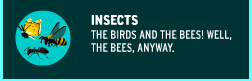 https://www.brainpop.com/science/diversityoflife/insects/